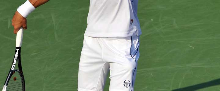 A cropped photo showing Novak Djokovic's serve grip.